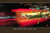 2013.03.16_悠遊阿里山-夜櫻車軌篇:2013.03.16_阿里山-夜櫻車軌篇0014.jpg