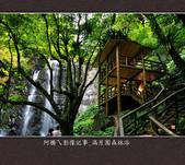 2013.03.23_滿月園森林浴:2013.03.23_滿月園森林浴-0013.jpg