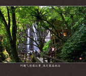 2013.03.23_滿月園森林浴:2013.03.23_滿月園森林浴-0014s.jpg