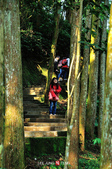 2014.04.05_溪頭遊記-風景篇:2014.04.05_溪頭遊記-風景篇0013.jpg