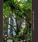 2013.03.23_滿月園森林浴:2013.03.23_滿月園森林浴-0015.jpg