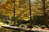 2014.12.09_溪州公園:2014.12.09_溪州公園0015.JPG