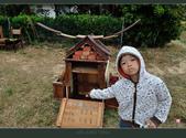 2013.10.23_新屋小鴨地景:2013.10.23_新屋小鴨地景-0004.jpg