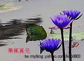 未分類相簿:ap_F23_20100402013148484.jpg