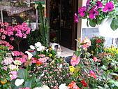 蜜月旅行之 托斯卡納的豔陽下97/04/11:花店