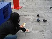 蜜月旅行之 托斯卡納的豔陽下97/04/13:餵鴿子