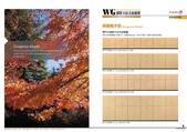 WG鋼製木紋系統櫥櫃:WG-MY0809.jpg