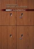 WG鋼製木紋系統櫥櫃:WG-櫻桃木.jpg
