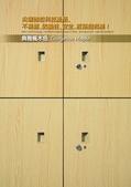 WG鋼製木紋系統櫥櫃:wg-楓木.jpg