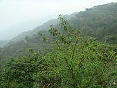 北大武山:DSC01434.JPG