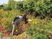 980315綠光花園(vs.媽媽妹妹):綠光花園 (5).JPG