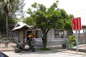 台南市   仁德:保安車站前百年七里香.jpeg