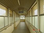 嘉義縣 水上:南靖車站 (7).JPG
