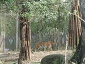 台北市 文山:動物園 (120).JPG