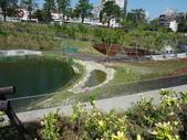 秋紅谷生態公園:秋紅谷生態公園 (15).jpg