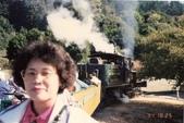 老火車頭:紅木森林 (3).jpg
