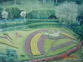雲林縣 古坑:劍湖山4.jpg