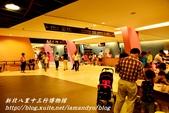 新北八里十三行博物館:14.JPG