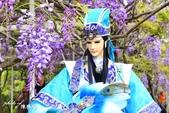 新北淡水紫藤咖啡園:d.JPG