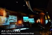 新北八里十三行博物館:20.JPG