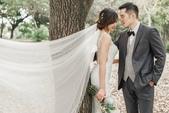 Elena's pre-wedding-Joanne:11011542_1009602952417598_179357597801026672_n.jpg
