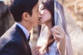 Elena's pre-wedding- Melody:10690104_944232502287977_7549162274568221707_n.jpg