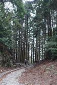 20151108十字路~多林森鐵之旅part-2:DSC02127.JPG