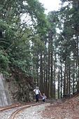 20151108十字路~多林森鐵之旅part-2:DSC02130.JPG
