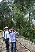 20151108十字路~多林森鐵之旅part-2:DSC02114.JPG