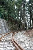 20151108十字路~多林森鐵之旅part-2:DSC02128.JPG