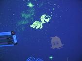 趙畫師的星空壁畫作品集-卡通海底世界篇:卡通海底a (1).JPG