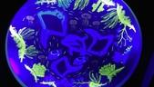 台北綠蒂飯店海底世界:IMAG0092.jpg