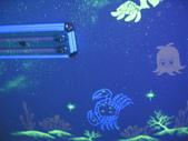 趙畫師的星空壁畫作品集-卡通海底世界篇:卡通海底a (8).JPG