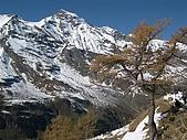 Alps(這是早期的相片 20年前)  2019 7月 再訪瑞士:DSCN0332