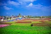 2015新社花海節:JaSon-2642.jpg
