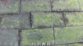 10-防滑止滑-青苔地面止滑-小黑蚊防治,花崗石止滑,浴室防滑,浴室止滑,磁磚防滑,磁磚止滑,止滑劑:13地面青苔 (8).jpg
