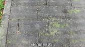 10-防滑止滑-青苔地面止滑-小黑蚊防治,花崗石止滑,浴室防滑,浴室止滑,磁磚防滑,磁磚止滑,止滑劑:8地面青苔 (3).jpg