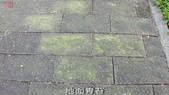10-防滑止滑-青苔地面止滑-小黑蚊防治,花崗石止滑,浴室防滑,浴室止滑,磁磚防滑,磁磚止滑,止滑劑:12地面青苔 (7).jpg