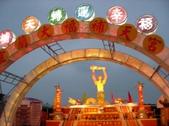 2009台灣燈會全記錄:SANY0014.JPG