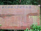 2008.05.23土城桐花公園:SANY0005.JPG
