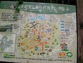 2008.05.23土城桐花公園:SANY0008.JPG