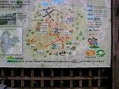 2008.05.23土城桐花公園:SANY0009.JPG