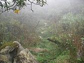 2008.09.25三角崙山:SANY0078.JPG