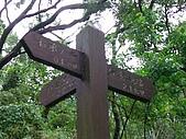 2008.05.23土城桐花公園:SANY0013.JPG