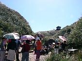 2008.11.15草嶺古道:17_1118虎字碑.JPG