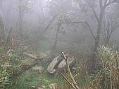 2008.09.25三角崙山:SANY0091.JPG