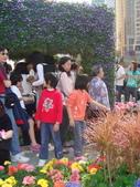 YR08 花卉展:1589792847.jpg