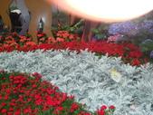 YR08 花卉展:1589792832.jpg