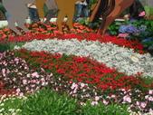 YR08 花卉展:1589792833.jpg