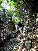 柴山鳳凰展翅大猴洞 2012-10-06 :zDSCN6150DSCI0324 x.jpg